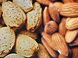 almonds are good for the heart
