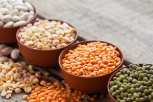 Highest protein foods list