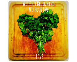 fresh coriander/cilantro leaves
