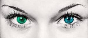 blue eye and green eye