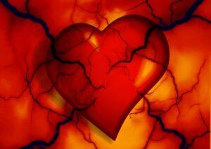 heart arteries