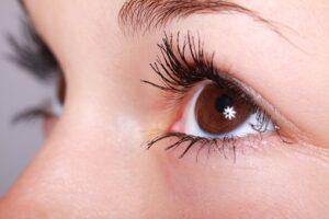brown human eyes