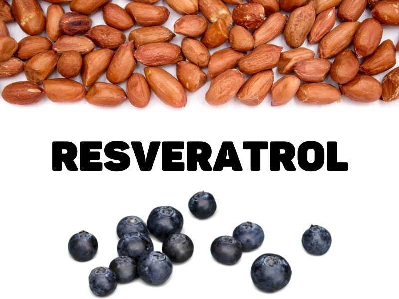 What is Resveratrol in?