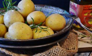 boiled potato in skin