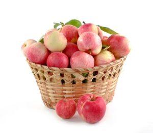 basket of fresh pink lady apples
