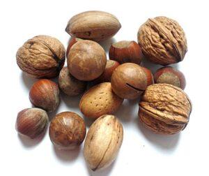 walnuts, pecan nuts, hazelnuts in shells