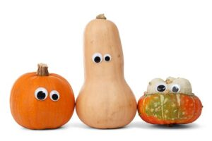 assorted squash with faces