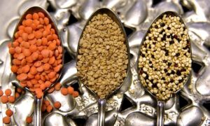 dried lentils and quinoa