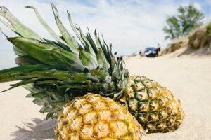 pineapple on tropical beach
