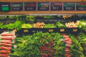 plant based shopping