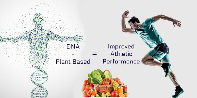 DNA and fitness